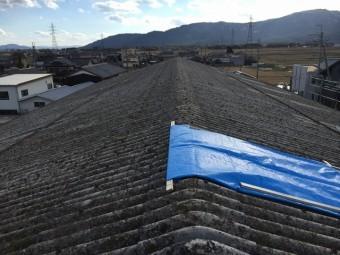 屋根破損状況