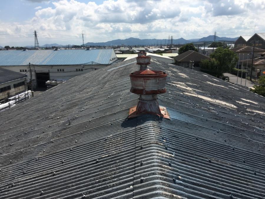 屋根上確認