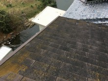 苔の生えたコロニアル屋根