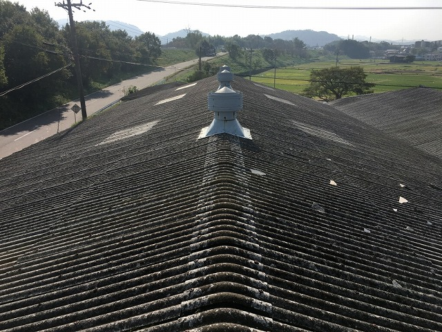 屋根上全景