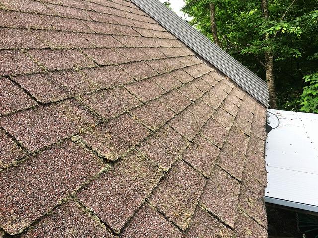 東側の屋根状態