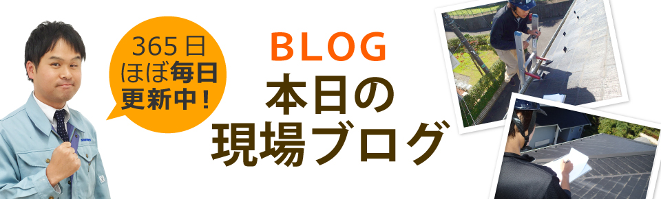高島市、大津市、守山市やその周辺エリア、その他地域のブログ