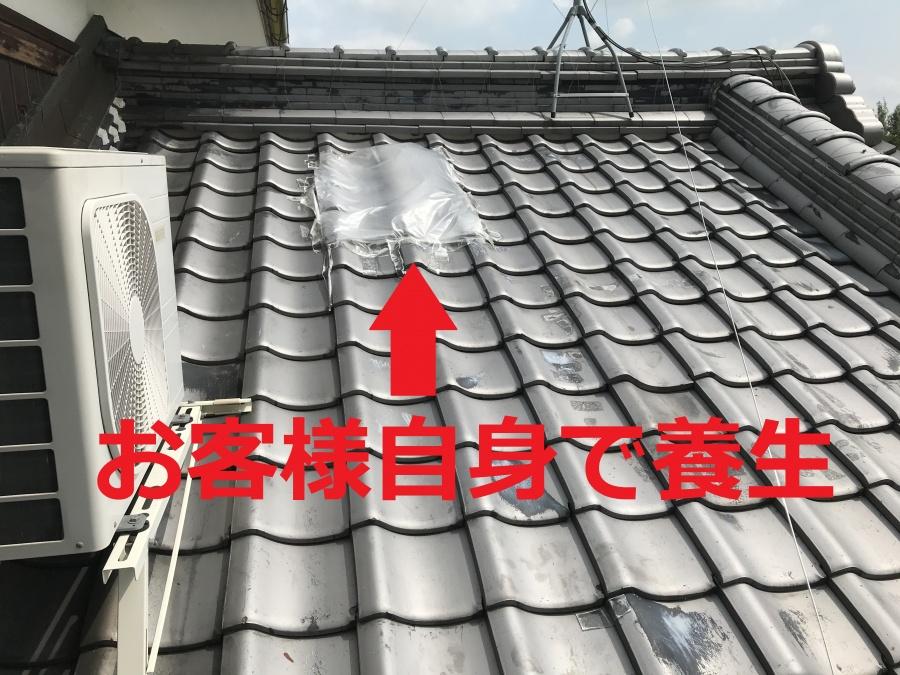 守山市にて雨漏りしている瓦屋根の葺き直し工事を行いました