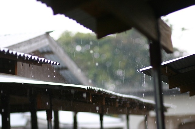 rainy-day-2572352_640