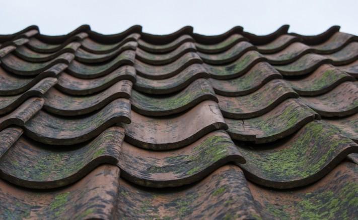 roof-815759_1920-columns1